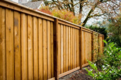 Standard Rail Top Fence