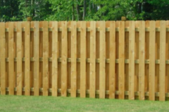 Tall Rail Fence
